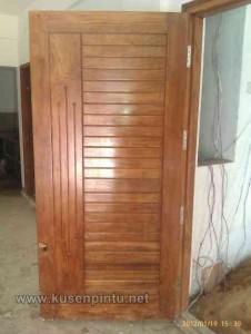 Contoh Pintu Rumah Dengan Daun Panil